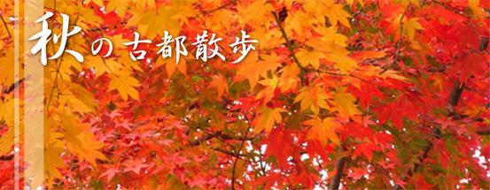 秋の風景はこちらから